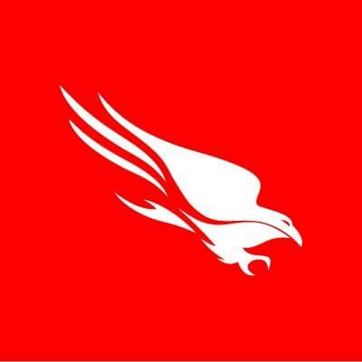 Crowdstrike-logo-icon